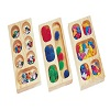 Sorting Tray Montessori
